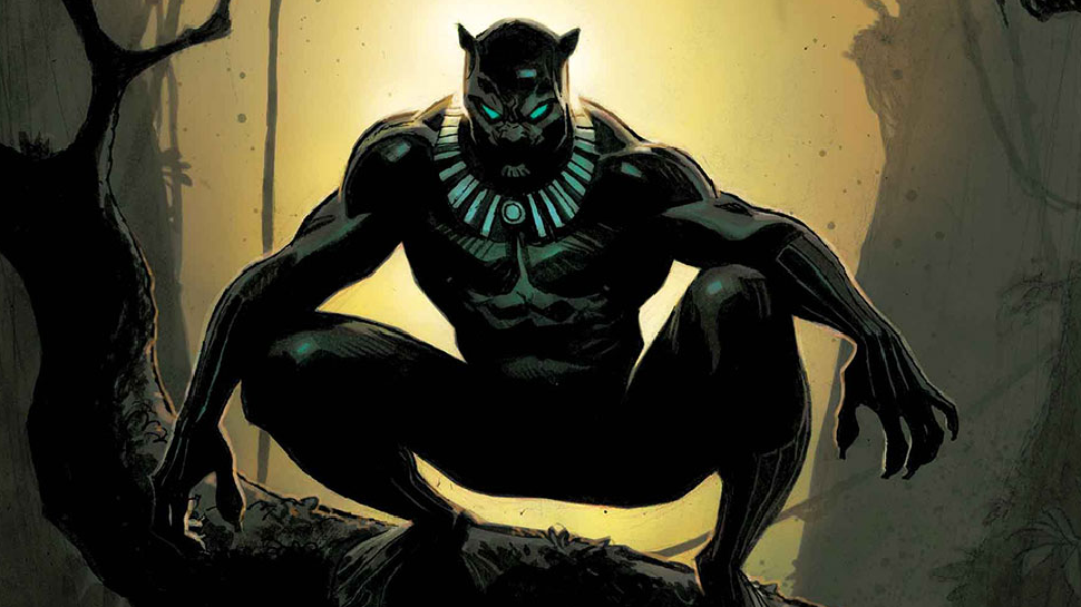 The Black Panther: Your Reflections Matter